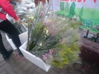 義工在年宵市場外當「散花姑娘」,讓途人領取賣相還好的花