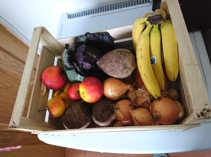 這些都是被農場剔除的食物
